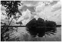 Mangrove islet, Biscayne Bay. Biscayne National Park ( black and white)
