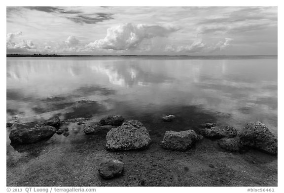 Rocks and Biscayne Bay reflections. Biscayne National Park, Florida, USA.