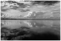 Clouds reflected in water, Biscayne Bay. Biscayne National Park, Florida, USA. (black and white)