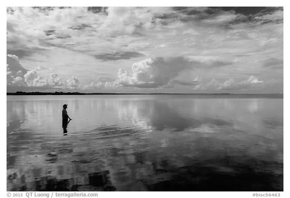 Park visitor looking, standing in glassy Biscayne Bay. Biscayne National Park, Florida, USA.