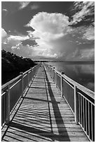 Boardwalk and Biscayne Bay, Convoy Point. Biscayne National Park ( black and white)
