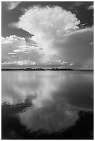 Cumulonimbus clouds, and mangrove-covered islets, Biscayne Bay. Biscayne National Park, Florida, USA. (black and white)