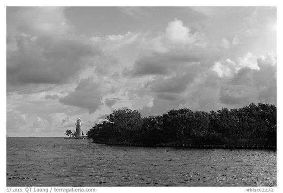 Vegetation and lighthouse, Boca Chita Key. Biscayne National Park (black and white)
