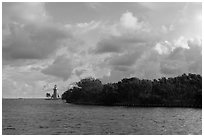 Vegetation and lighthouse, Boca Chita Key. Biscayne National Park ( black and white)