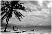 Beach and boats moored in Tortugas anchorage. Dry Tortugas National Park ( black and white)