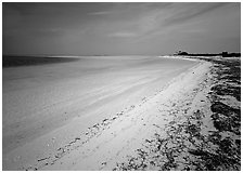 Beach and turquoise waters, Bush Key. Dry Tortugas  National Park ( black and white)