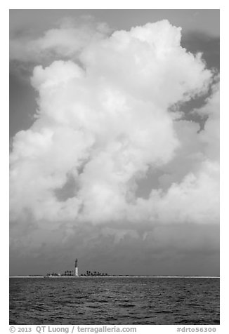 Loggerhead key and lighthouse and tropical cloud. Dry Tortugas National Park (black and white)