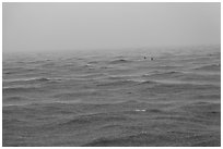 Windjammer wreck sticking out from ocean during rainstorm. Dry Tortugas National Park ( black and white)