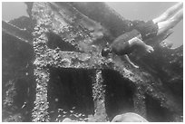 Free diver exploring Windjammer Wreck. Dry Tortugas National Park ( black and white)