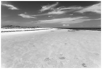 Clear turquoise waters and beach, Loggerhead Key. Dry Tortugas National Park ( black and white)
