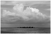 Vegetation-covered Long Key below tropical cloud. Dry Tortugas National Park ( black and white)