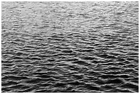 Walls reflections in moat. Dry Tortugas National Park ( black and white)