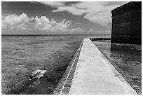 Snorkeling next to Fort Jefferson seawall. Dry Tortugas National Park ( black and white)