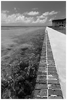 Seawall and coral reefs. Dry Tortugas National Park ( black and white)