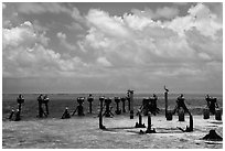 South coaling dock ruins and seabirds, Garden Key. Dry Tortugas National Park ( black and white)