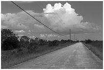 Road and cloud, Chekika. Everglades National Park ( black and white)