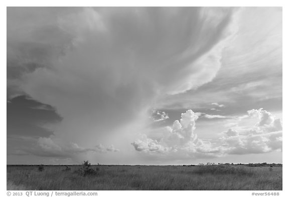 Storm clouds, Chekika. Everglades National Park (black and white)