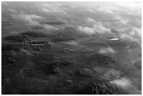 Aerial view of subtropical marsh, trees, and fog. Everglades National Park, Florida, USA. (black and white)