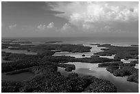 Aerial view of Ten Thousand Islands and Gulf of Mexico. Everglades National Park ( black and white)