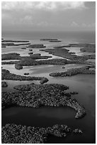 Aerial view of Ten Thousand Islands and coast. Everglades National Park ( black and white)