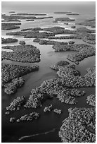 Aerial view of Ten Thousand Islands. Everglades National Park ( black and white)