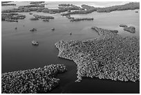 Aerial view of coastal mangrove islands. Everglades National Park ( black and white)