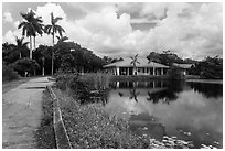 Anhinga Trail, Royal Palms Visitor Center. Everglades National Park ( black and white)