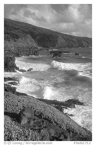 Seascape with waves and coastline, and cliffs,  Kipahulu. Haleakala National Park (black and white)