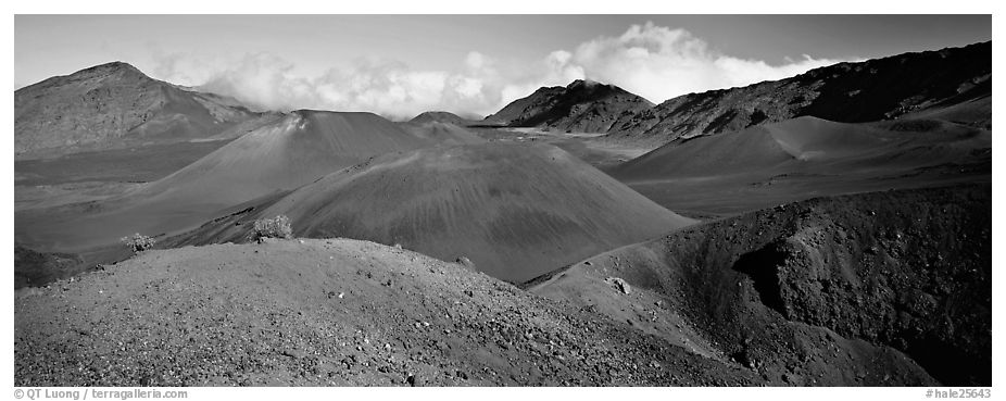 Volcanic scenery with colorful ash inside Haleakala crater. Haleakala National Park (black and white)