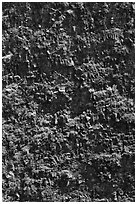 Crater vertical walls. Hawaii Volcanoes National Park, Hawaii, USA. (black and white)