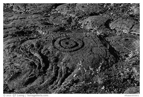 Petroglyph with motif of concentric circles. Hawaii Volcanoes National Park (black and white)