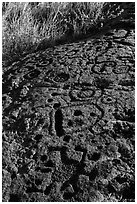 Hardened lava with panel of pecked images. Hawaii Volcanoes National Park, Hawaii, USA. (black and white)