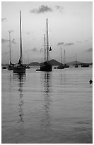 Sailboats in Cruz Bay harbor at sunset. Virgin Islands National Park, US Virgin Islands. (black and white)