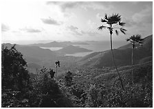 View over East end of island. Virgin Islands National Park ( black and white)