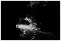Centerline road at night. Virgin Islands National Park ( black and white)