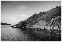 Great Lameshur Bay. Virgin Islands National Park ( black and white)