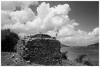 Leprosiarum building, Hassel Island. Virgin Islands National Park ( black and white)