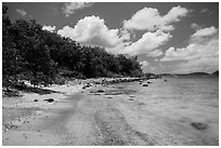 Shoreline and reef, Hassel Island. Virgin Islands National Park ( black and white)