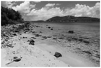 Beach, Hassel Island. Virgin Islands National Park ( black and white)