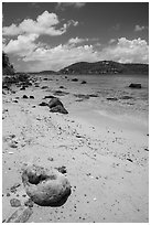 Coral rock and beach, Hassel Island. Virgin Islands National Park ( black and white)
