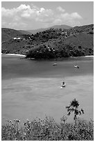 Tropical anchorage, Francis Bay. Virgin Islands National Park ( black and white)