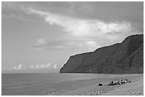 Campers and tire tracks in the sand, Polihale Beach, sunset. Kauai island, Hawaii, USA (black and white)