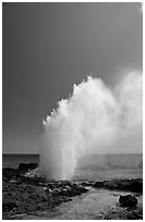 Stream of water shooting up from blowhole. Kauai island, Hawaii, USA (black and white)