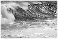 Blue wave. North shore, Kauai island, Hawaii, USA ( black and white)