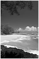 Beach, volcanic rock, and turquoise waters, and homes  near Haena. North shore, Kauai island, Hawaii, USA ( black and white)