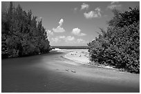 Stream and beach. North shore, Kauai island, Hawaii, USA ( black and white)