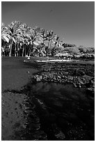 Beach of basalt black sand  at Punaluu. Big Island, Hawaii, USA (black and white)