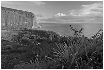Waipio Valley and Ocean at sunrise. Big Island, Hawaii, USA ( black and white)