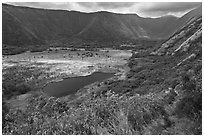 Waipio Valley. Big Island, Hawaii, USA ( black and white)