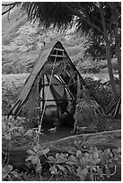 Hut, Waipio Valley. Big Island, Hawaii, USA ( black and white)